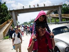 Mỹ kiểm tra ADN để làm rõ quan hệ huyết thống của người nhập cư