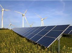 Mỹ: Năng lượng tái tạo lần đầu vượt mặt nhiệt điện than