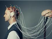 Những hiểu nhầm về trí thông minh của con người