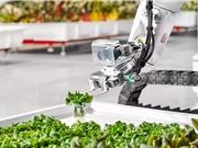 California: trang trại robot bắt đầu bán những sản phẩm đầu tiên