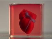 Các nhà khoa học Israel đã in 3D thành công một trái tim sống