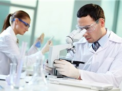 Đức tăng ngân sách cho nghiên cứu khoa học trong thập kỷ tới