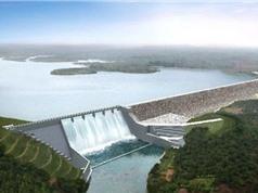 Chỉ 1/3 các con sông dài nhất thế giới chảy tự do
