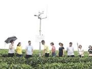 Thái Nguyên: Ứng dụng công nghệ iMetos hỗ trợ sản xuất nông nghiệp