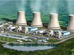 Cần tầm nhìn 30 đến 50 năm trong quy hoạch phát triển, ứng dụng năng lượng nguyên tử