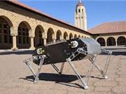 Sinh viên Stanford chia sẻ công nghệ chế tạo chó robot