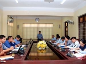 Quảng Trị: Nghiên cứu xây dựng mô hình trồng thử nghiệm cây sâm Bố Chính tại vùng gò đồi huyện Cam Lộ