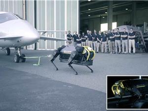 [Video] Chó robot kéo máy bay nặng 3 tấn