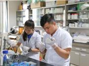 Dự án giải mã 600 giống lúa Việt Nam: Mới chỉ là bước khởi đầu