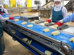 Nông nghiệp công nghệ cao ở ĐBSH: Tất yếu nhưng không dễ dàng