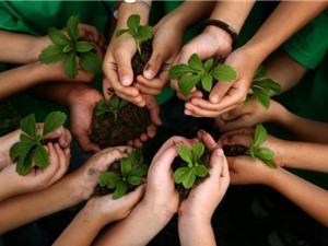 Philippines: Dự luật mới yêu cầu học sinh, sinh viên phải trồng 10 cây xanh trước khi tốt nghiệp