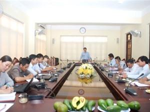 Quảng Trị: Điều tra chọn cây giống làm vật liệu đầu dòng và xây dựng mô hình vườn ươm giống bơ địa phương có triển vọng của huyện Gio Linh