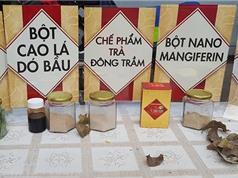 Sản xuất thành công trà thảo dược từ lá xoài và dó bầu bảo vệ sức khỏe