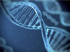 Trung Quốc hạn chế việc thu thập DNA trái phép