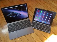 Apple có thể đưa OLED vào máy tính xách tay và máy tính bảng