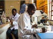 Châu Phi: Những bước gây dựng nền khoa học