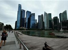 Singapore công bố nội dung quy định khung về chia sẻ dữ liệu