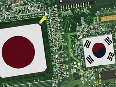Ngành công nghiệp chip toàn cầu lao đao khi Nhật Bản cấm vận Hàn Quốc