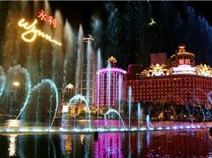 Casino tại Macau dùng AI để nhận diện người thua nhiều