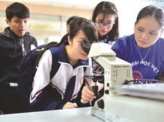 Quyết định chọn trường đại học của học sinh: Cha mẹ và thông tin truyền miệng tác động nhiều nhất