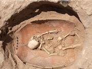 ADN cổ đại tiết lộ nguồn gốc của người Philistines