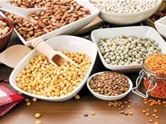 Phân tích hàm lượng độc tố và vitamin trong thực phẩm bằng kỹ thuật cột ái lực miễn dịch