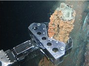 Khai khoáng biển sâu sẽ biến đại dương thành 'không gian công nghiệp mới'