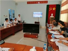 An Giang: Sản xuất thử nghiệm trồng dưa lưới thủy canh ứng dụng công nghệ cao tại thành phố Long Xuyên