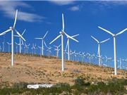 Trang trại điện gió lớn nhất châu Phi đi vào hoạt động