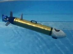Nghiên cứu thành công robot ngầm tự hành cứu hộ và quan trắc môi trường