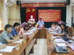 Cao Bằng: Xây dựng mô hình trồng và chế biến chè xanh chất lượng cao tại xã Thị Ngân, huyện Thạch An
