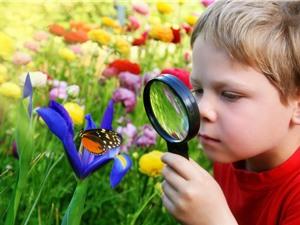 Vì sao óc tò mò giúp trẻ học sâu?