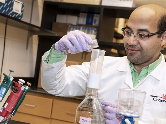 Cây bạch quả hỗ trợ điều trị tiểu đường tuýp 2
