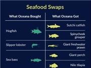 Nhiều loại cá trên thị trường Mỹ bị dán nhãn sai