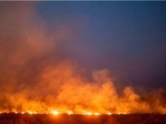 Cháy rừng Amazon khủng khiếp là vậy nhưng nguồn oxy của Trái Đất sẽ không bị mất đi