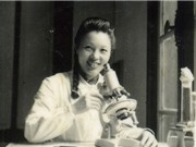 Vi Kim Ngọc: Người khởi tạo từ điển hình ảnh về muỗi