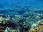 Lỗ khoan đại dương cách mạng hóa khoa học trái đất