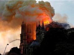 Nguy cơ nhiễm độc chì từ vụ cháy nhà thờ Đức Bà: Nhà chức trách bị cáo buộc thiếu minh bạch