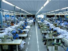 Chuyên gia phần mềm, CMO Hoàng Trung Thiên Vương nói về doanh nghiệp chuyển đổi số