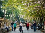Không gian công cộng cho một Hà Nội đáng sống