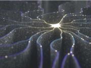 Dự án mô phỏng não người của Elon Musk được Microsoft đầu tư 1 tỷ USD