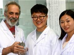 """Châu Âu không e ngại tài trợ các nhà khoa học """"thân"""" Trung Quốc"""