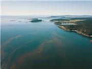 Hệ thống phát hiện các mối nguy từ tảo và sinh vật phù du