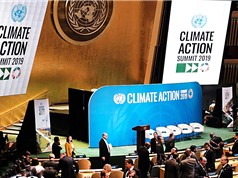 Nhiều kỳ vọng từ Hội nghị thượng đỉnh của LHQ về biến đổi khí hậu