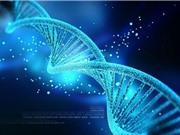 """THÔNG BÁO: Hội thảo khoa học """"Một số kết quả nghiên cứu hệ gen người Việt Nam"""" của Viện Hàn lâm Khoa học và Công nghệ Việt Nam"""