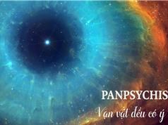 Câu trả lời cho Vấn đề Khó giải: Vạn vật đều có ý thức (Panpsychism)