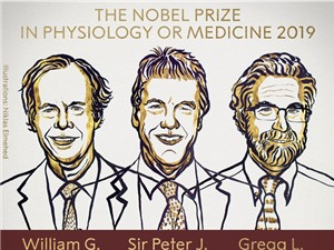 Nobel Y Sinh 2019: Giải mã cách các tế bào cảm nhận lượng oxy