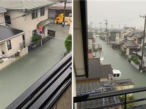 Cộng đồng mạng sửng sốt trước cảnh nước lũ ngập Nhật Bản vẫn sạch trong, không một cọng rác