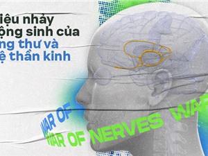 Điệu nhảy cộng sinh của ung thư và hệ thần kinh: Y học đang bước chân vào một miền đất hứa mới