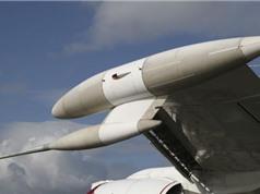 Một con chim hạ gục chiếc máy bay được thiết kế để chống cuộc tấn công hạt nhân